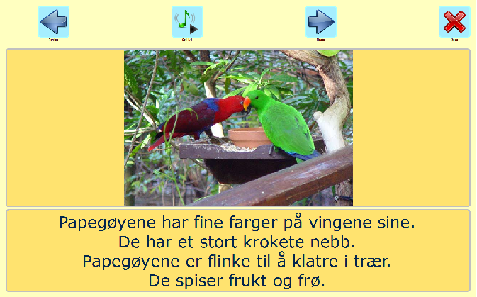 Papegøye vips